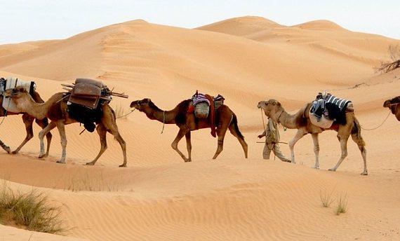 Rodzinne wakacje w Tunezji